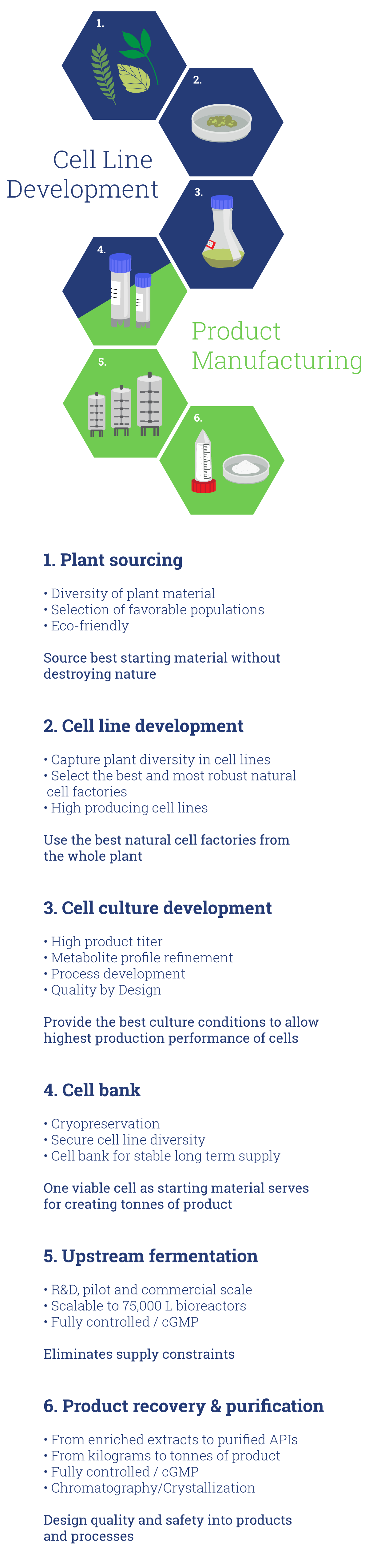 Phyton Biotech Plant Cell Fermentation Process Infographic